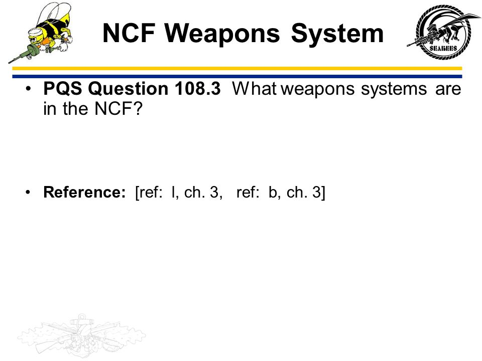 NCF Weapons System PQS Question 108.3 What weapons systems are in the NCF Reference: [ref: l, ch. 3, ref: b, ch. 3]